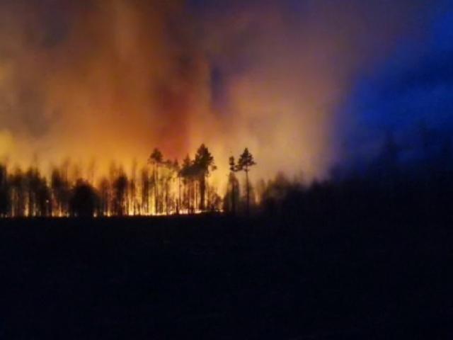 9 лесных пожаров в нашей области